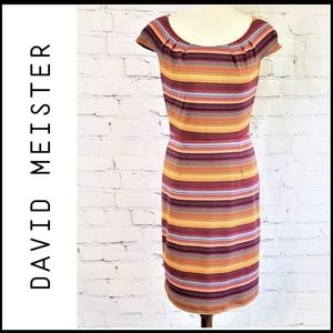 DAVID MEISTER Striped Sheath Cap Sleeve Dress 8